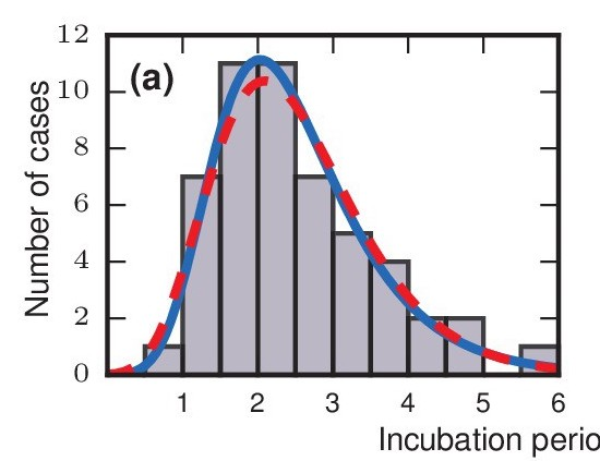 Evolutionary dynamics of incubation periods